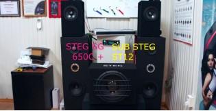Видео обзор Сабвуфер STEG ST 12